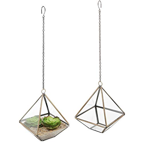 Hanging metal glass terrarium