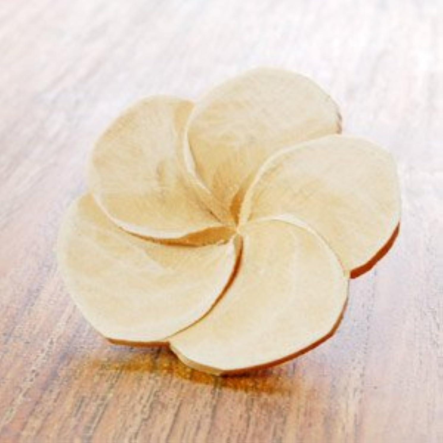 市場複雑効果的【アジア工房】プルメリアの花びらをモチーフにした木製アロマフラワー[Aタイプ][10891] [並行輸入品]