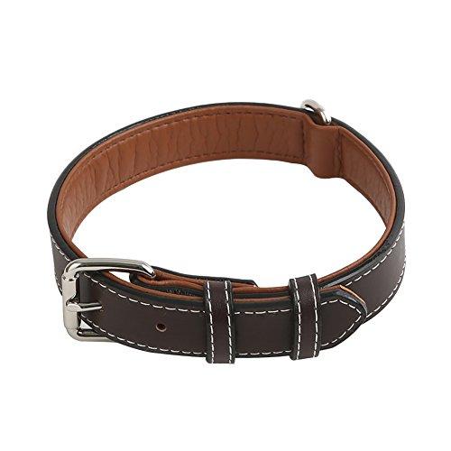 Vivifying Hundehalsband aus Leder, Verstellbar von 52 cm bis 64 cm Halsband aus Echtem Leder für Große Hunde