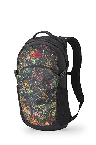 Gregory Mountain Products Nano 18 Everyday Outdoor Backpack