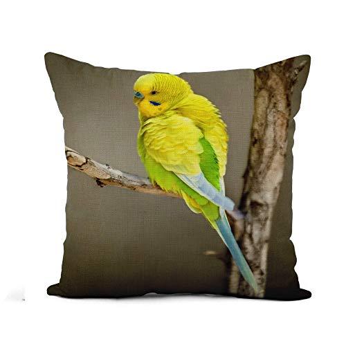 Throw Pillow Cover Animales coloridos Periquito amarillo en la rama Budgericar Aviar australiano Funda de almohada Decoración del hogar Funda de almohada de lino de algodón cuadrada Funda de cojín