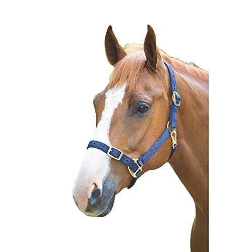 Shires Collares de cabeza de nylon - 384B Small Pony Navy
