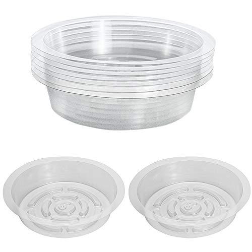 LUCY WEI 10 PCS Plastica Sottovasi Trasparenti,Piante Piattini per Fiori per Piante da Interni Esterni Pallet - Sottovaso Rotondo 6 in