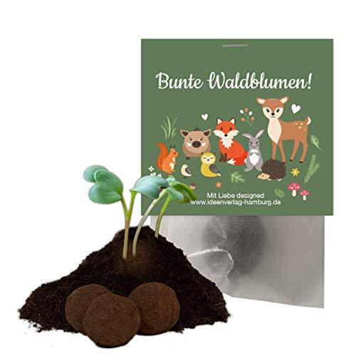 Ideenverlag 12x Waldtiere Samenbomben als Mitgebsel zum Kindergeburtstag / Seedbombs / Partytüten / Mitgebseltüten / Geschenktüten / Blumen / Give-aways / Geburtstag / Kinder / Saatkugeln