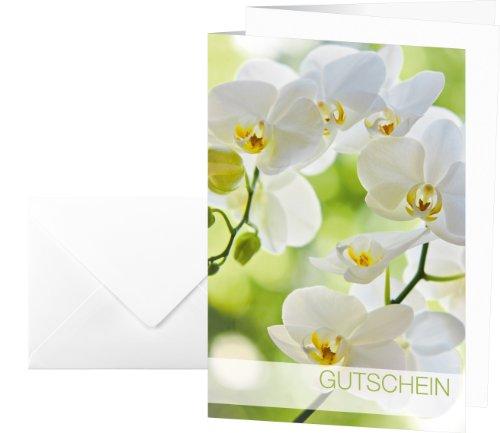 SIGEL DS102 Gutscheinkarten mit Margeriten, DIN lang, 10er Set mit Umschlägen