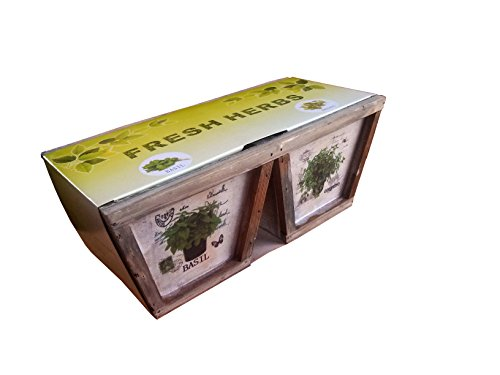 Fenêtre de fines herbes Jardinière/Pot Kit complet avec graines et Compost