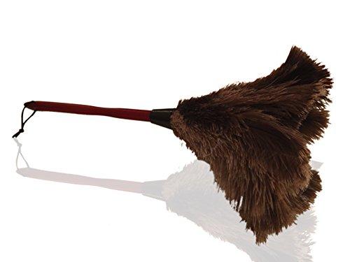 Hochwertiger 50cm 20'' Premium-Staubwedel aus echten Straußenfedern – Zieht Staubpartikel an- Dicke weiche Federn an einem haltbaren ergonomischen Holzgriff – einfaches effizientes Reinigen und Staubwischen