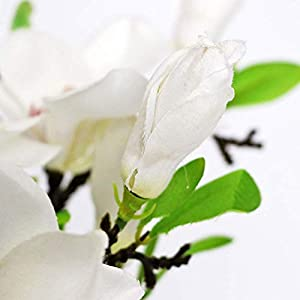 Direct 6PCS Artificial Magnolia Flowers,Silk White Magnolia Flowers Realistic Silk Flower Bouquet, for Home Table Store Floral Arrangements Wedding Holidays Party Decor