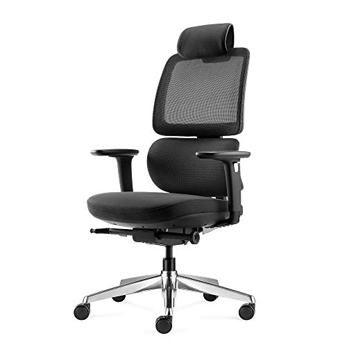 ALFA Ergonomic Office Chair with Ajustable Lumbar Support, Thick Seat Cushion & 140° Reclining Computer Chair, Adjustable 3D Armrests Rolling Executive Task Chair