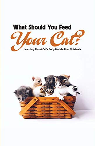 What Should You Feed Your Cat- Learning About Cat'S Body...