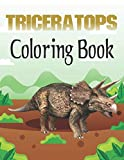 Triceratops Coloring Book
