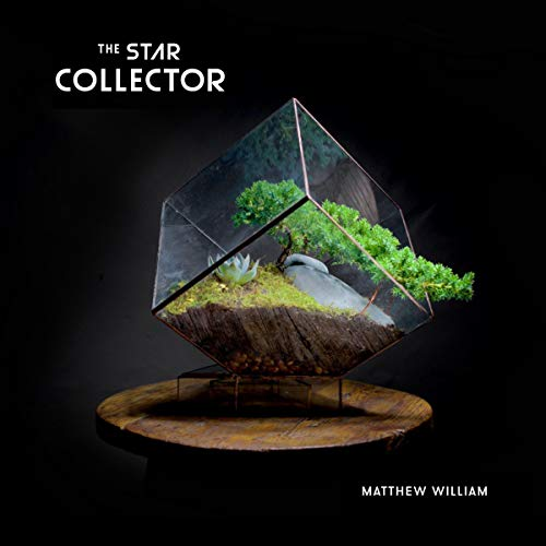 The Star Collector audiobook cover art