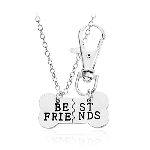 2pcs Friendship Jewelry Dog Bone Best Friends Charm Necklace Keychain BFF Bones Design (silver tone 1)