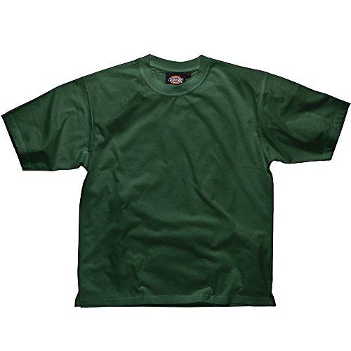 Dickies SH34225 BG S maat klein T-shirt - Lincoln groen Small Fles Groen