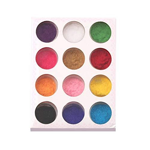 12 Couleurs de mélange Poudre Nail Art Poudre Poussière Conception Conseils Décoration pour Nail Poudre Manucure Nail Art