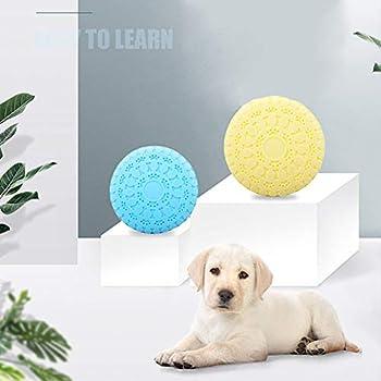 Jouet d'entraînement pour frisbee en silicone souple pour chien de compagnie, caoutchouc naturel, 22,8 cm, deux pièces au total jaune + bleu