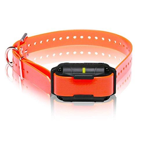 Dogtra 2300NCP Zusatz-Empfänger, professionelle Qualität, hohe Leistung, 2 Hunde, erweiterbar, Fernausbildung, E-Halsband