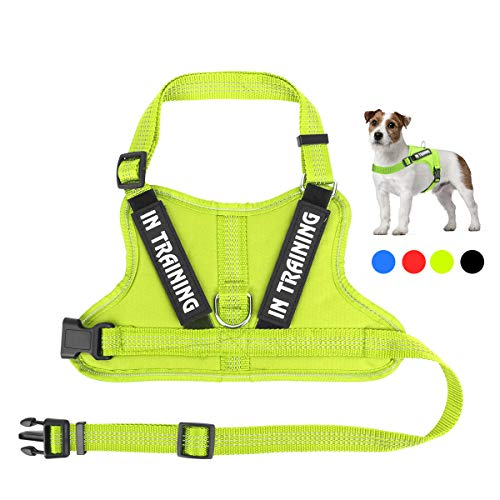 Noyal in Training Hundegeschirr, weiches atmungsaktives Mesh-Hundegeschirr – Verstellbare 3M reflektierende Outdoor-Haustierweste mit 2 abnehmbaren Patches für kleine und mittelgroße Hunde, XS, grün