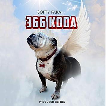 366 Koda