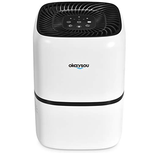 Okaysou AirMic4S Medical Grade Air Purifier for Home Allergies and Pets, Smokers, Odors, Dust,...