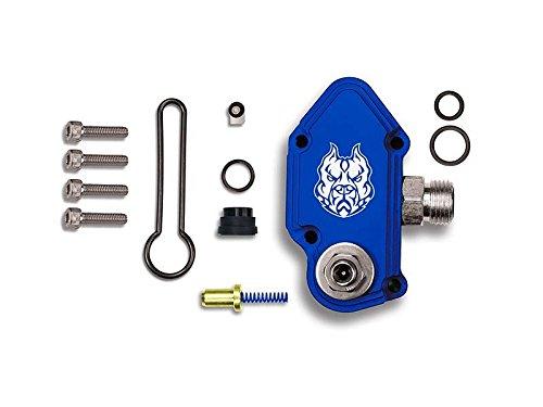 Top 6.0 blue spring kit upgrade for 2020