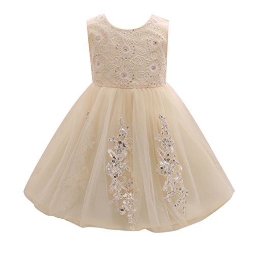 Zhhlinyuan 0-24 Months,Mode Newborn Toddler Baby Girls Sequins Lace Flowers Princess Dress Kids Tulle Party Pageant Wedding Bridesmaid Tutu Dresses