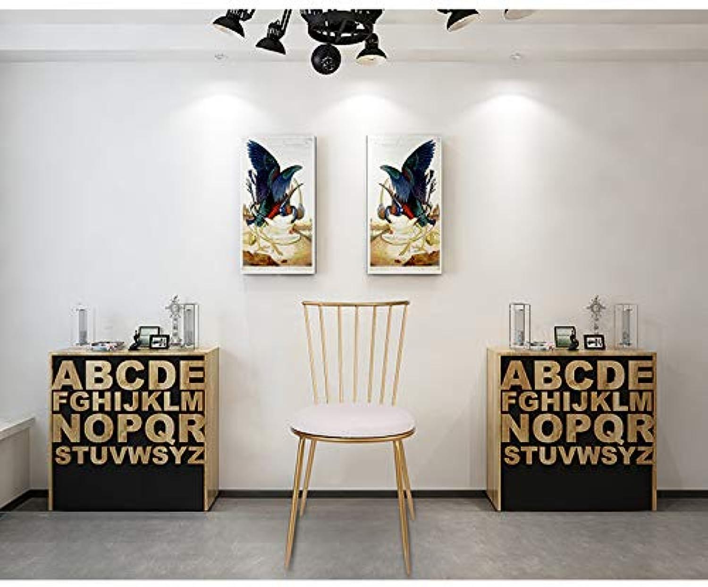Commercial Wrought Iron Dining Chair Modern Minimalist Cafe Tea Shop Restaurant Backrest Leisure Chair