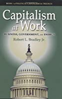 Capitalism at Work: Business, Government and Energy (Political Capitalism)