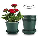 Livelyhom Plant Pots with Saucers - 0.5 Gallon 6.5 Inch Plastic Dark Green Set of 6, Root-Control Nursery Seedling Planter Garden Flower Pot Container for Indoor Outdoor Bonsai Plants, Aloe, Herb