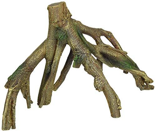 Lucky Reptile Mr-L Grande Racine de manguier