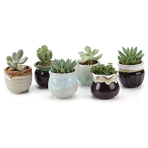 T4U Small Ceramic Succulent Planter Pots with Drainage Hole Set of 6, Sagging Glazed Porcelain Handicraft as Gift for Mom Sister Aunt Best for Home Office Restaurant Table Desk Window Sill Decoration