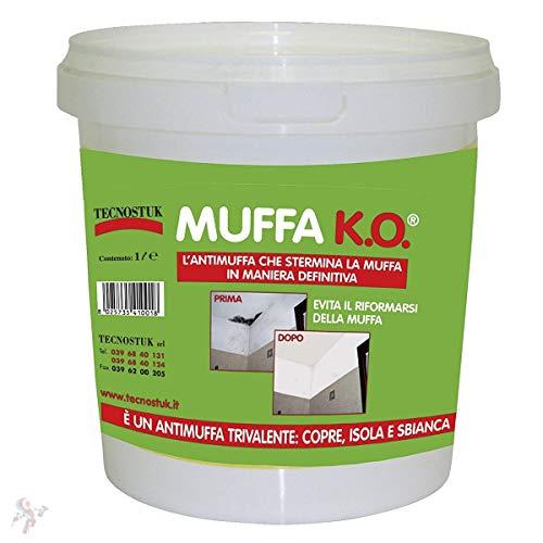 Muffa ko tecnostuk lt.1 speciale antimuffa sbiancante