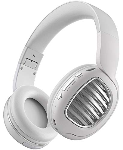Aduro Rechargeable Bluetooth Wireless Headphones with Microphone Foldable Over The Ear Headphones with Mic Keynote Wireless Headset - White/Silver