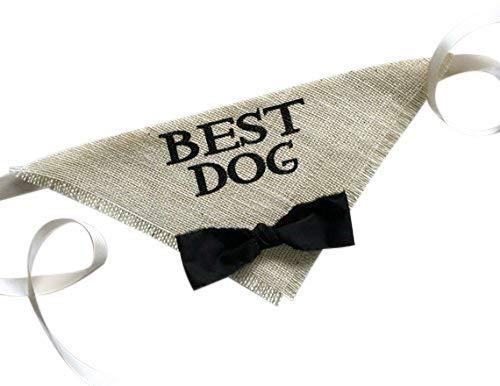 Hello Hazel Company Best Dog Wedding Pet Bandana