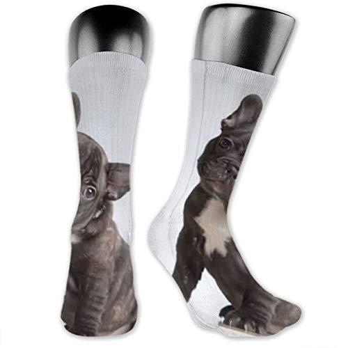 viata sock Francés Bulldog Buscando Camer Calcetines de Compresión Medias Para Calcetines Altos Calcetines de Tripulación Calcetines de Tubo Atlético