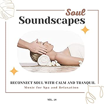 Soul Soundscapes, V14 - Reconnect Soul With Calm And Tranquil Music For Spa And Relaxation