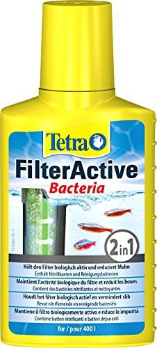 Tetra FilterActive 100 ml Contiene Batteri Vivi che Attivano il Filtro e Batteri che Riducono l'Accumulo di Impurità, Mantiene il Filtro Biologicamente Attivo e Riduce le Impuritá