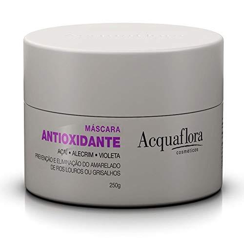 Acquaflora - Linha Antioxidante - Mascara 250 Gr - (Acquaflora - Antioxidant Collection - Hair Mascara Net 8.81 Oz) - Mascaras pour Cheveux