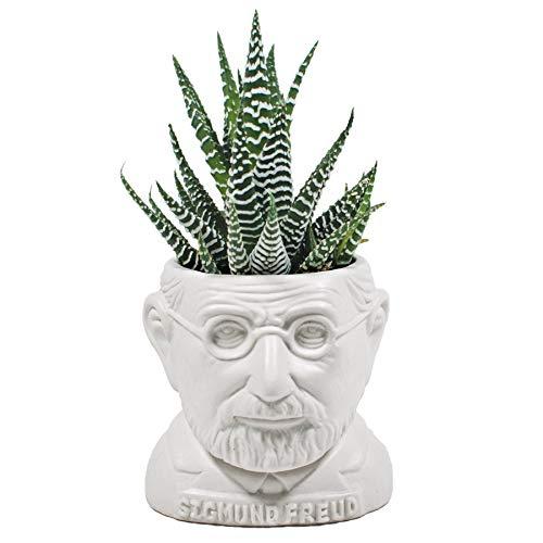 Sigmund Freud Bust Planter