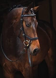 Rambo Micklem Diamante English Leather USA, Black - Large Horse