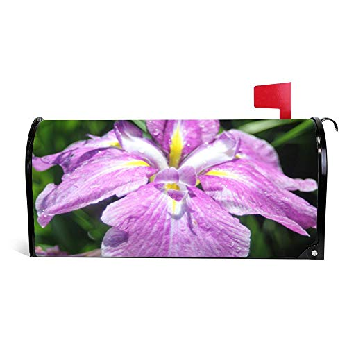 Yilooom Throw Pillow With Purple Iris Mailbox Cover Magnetic Mail Box Wrap Yard Garden Decor 17.25 X 20.75 Inches