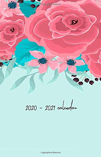 2020 - 2021 Calendar: Two Year Planner: Organizer Diary (password and to do list), Inspiration Quotes, Schedule, Notebook with Isometric Dot Bullet ... Border Drawing Pink Flowers Mint Green Theme