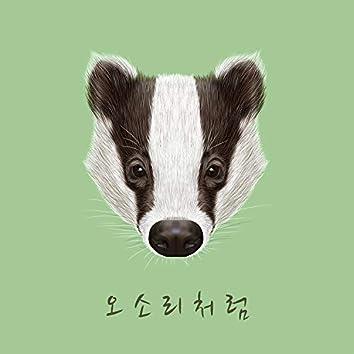 Like a badger