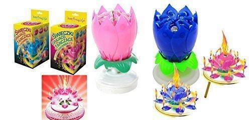 Musik Blumenkerzen Alles Gute zum Geburtstag mit Fontäne und Musik Kerzen Tortendeko Hochzeitsfontäne 14 Kerzen mit der bekannten Melodie Happy Birthday (Rosa und Blau 14 Kerzen)