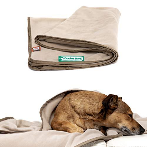 Doctor Bark | kuschelige Hundedecke waschbar bis 95°C, hygienische, weiche Fleecedecke für Sofa und Hundebett, Flauschige Haustierdecke - Made in Germany (L - 120x90 cm/Beige)