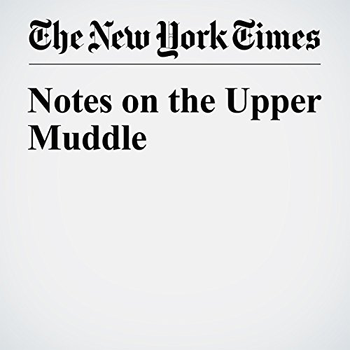 Notes on the Upper Muddle audiobook cover art