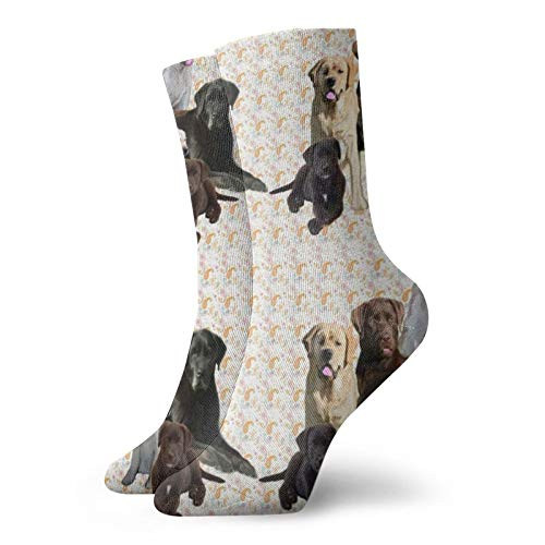 Colin-Design Labrador Retriever Wandbild personalisierte Socken Sport Athletic Strümpfe 30 cm Crew Socken für Männer Frauen