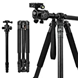 10 Best Tripod Monopod for DSLR Cameras