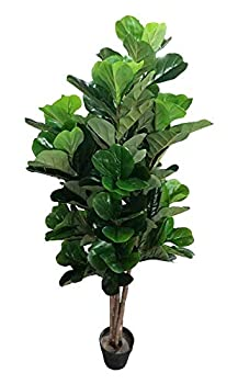 AMERIQUE 28113 Gorgeous & Dense 5  Fiddle Leaf Fig Tree Artificial Silk Plant with UV Protection with Nursery Plastic Pot Feel Real Technology Super Quality 5 feet Green