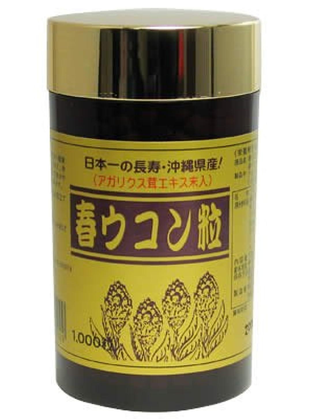 ヒゲクジラシンクパンフレット沖縄県産 春ウコン粒 1000粒